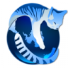 GNU Icecat : A libre fork of the Firefox browser